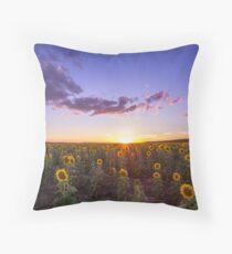 Clifton's Sunflower Field Throw Pillow
