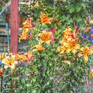 In The Garden #6 by SylviaHardy