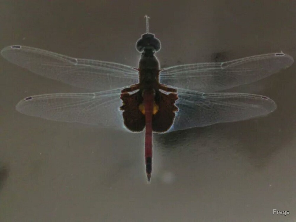 Dragonfly (Industrial) by Fregs