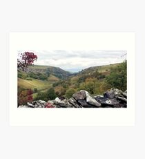 Smardale Viaduct, Cumbria, UK Art Print