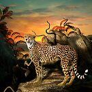 Leopard Sighting by Lisa  Weber