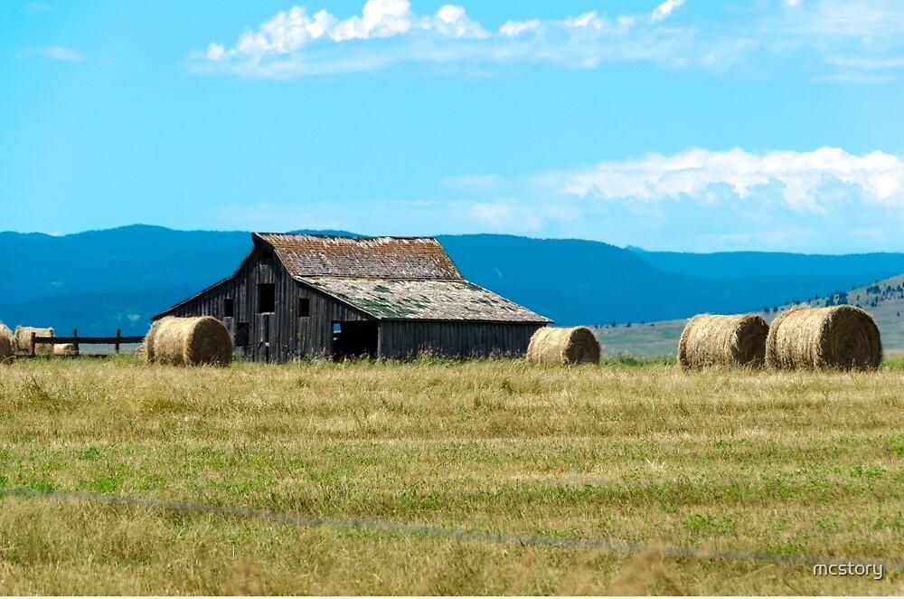 Prairie Barn by mcstory