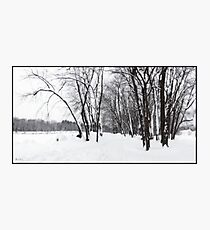 Rotary Park in New Snow Photographic Print