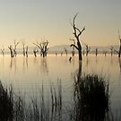 The Keepers of the Lake by cjcphotography
