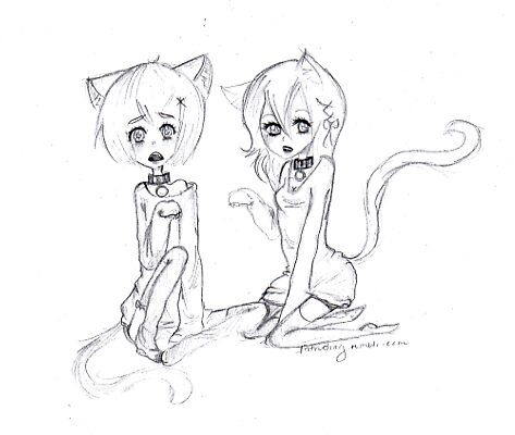 Kitty sibs by marshmallowdays