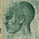 Phrenology Head by Elena Ray
