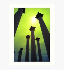 Arboretum Pillars Art Print