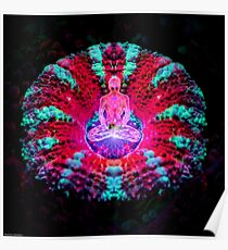 Mushroom Meditation Poster