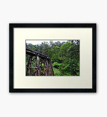 Puffing Billy Railway Australia Framed Print