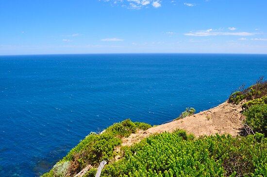 Ocean View by dundeethecroc