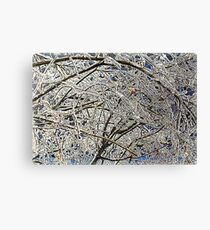 Winter Freezing Canvas Print