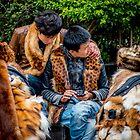 Furry Friends by Michael Pross