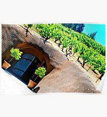 wine country beauty Poster