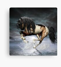Dancing On Water Canvas Print
