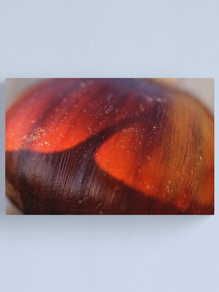 Alternate view of chestnut dream Canvas Print