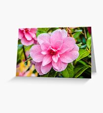 After The Rain - Pink Flower Greeting Card