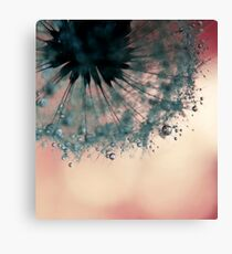 droplets of dusty blue Canvas Print