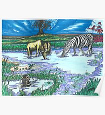 Zebra at the Waterhole Poster