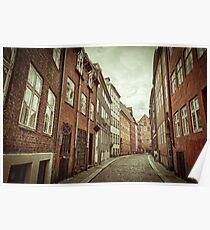 Cobbled Street in Copenhagen Poster