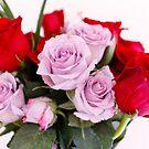 Valentine Roses by Debbie Cato