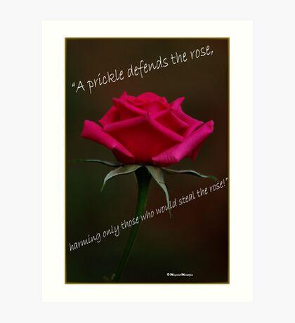PRICKLY ROSES Art Print