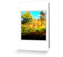 bushes and trees Greeting Card