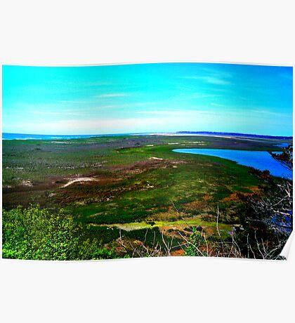 Cape cod landscape Poster