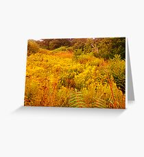 flower field Greeting Card