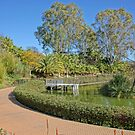 Paloma Park by Aase