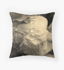 It's over... Throw Pillow