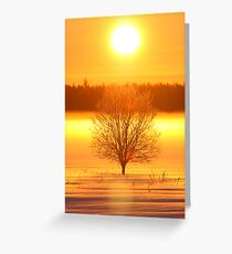 Beginning of the Day  Greeting Card