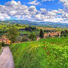 The road to Greve, Tuscany by vivsworld