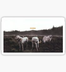 FOXING- album artwork Sticker
