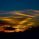 Night Sky by Larry Llewellyn