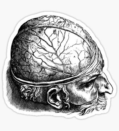 Brain Man Sticker