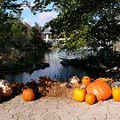 before halloween by bertipictures