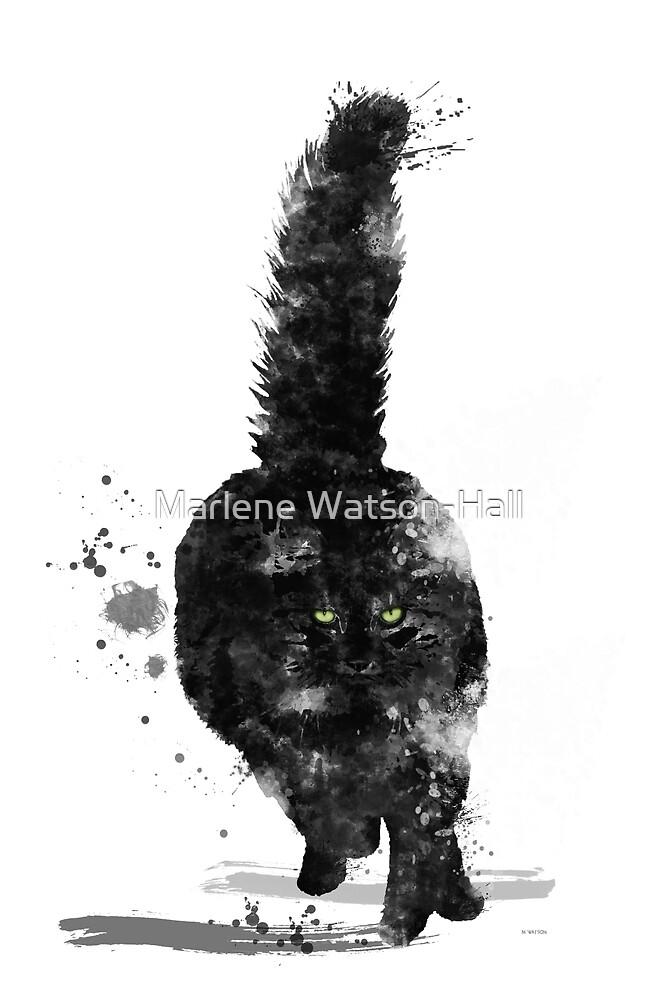 Black Maine Coon Cat by Marlene Watson