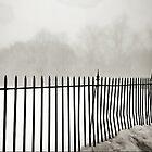 Foggy Fence by chrstnes73
