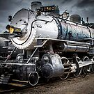 Train Profile by George Lenz