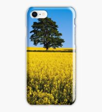 Rapeseed Field, Northern Ireland, Hillsbough, Co. Down iPhone Case/Skin