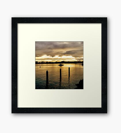 Settling in the Bay Framed Print