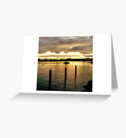 Settling in the Bay Greeting Card