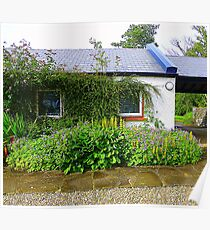 An Irish Cottage Poster