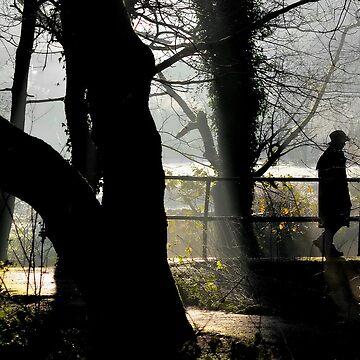 Dawn Walk by relayer51