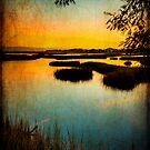 Galveston Sunset by RayDevlin