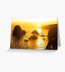 beautiful sunset over the virgin rock with wild tall grass Greeting Card