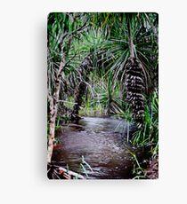 Pandanus Northern Territory Wet Season Creek Canvas Print