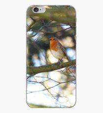 Robin in the Tree iPhone Case