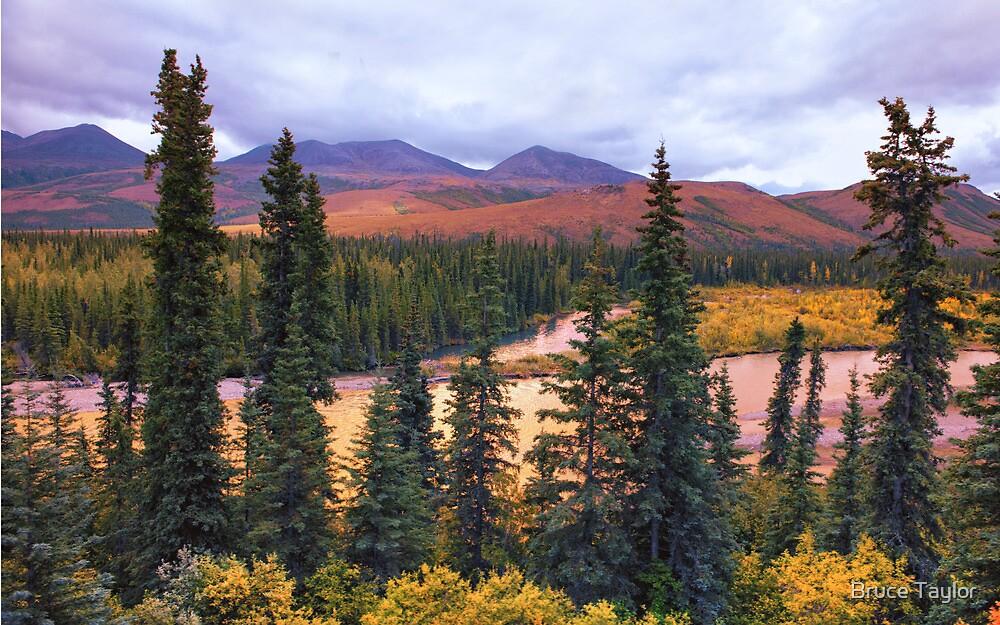 Alaska by Rail by Bruce Taylor