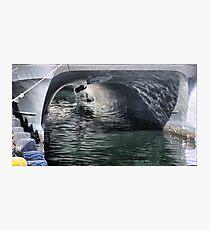Bergen Harbour  -  Under the Cat. (2) Photographic Print